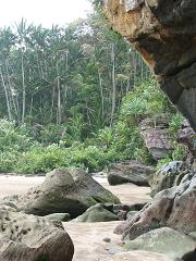 jungle-beach.JPG
